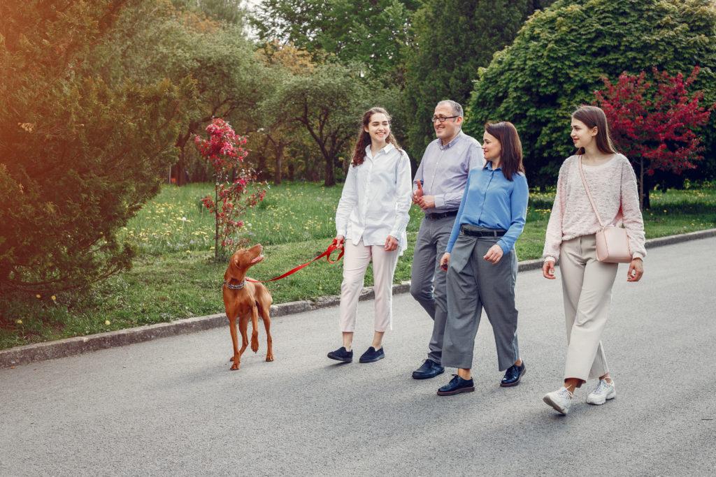 elegant family spend time summer park